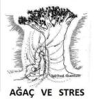 Ağaç ve stres